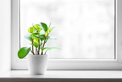 Lån til energivenlige og miljøvenlige vinduer